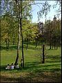 Царицино 9 мая 2013 - panoramio.jpg