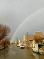 اسفرورین در یک روز بارانی.png