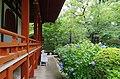 久米寺にて 橿原市久米町 Kume-dera 2013.6.24 - panoramio.jpg
