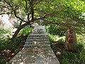 古松园 - Ancient Pine Garden - 2012.07 - panoramio.jpg