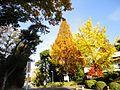 名古屋大学 - panoramio (21).jpg