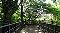 常磐神社 - panoramio (12).jpg