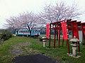 桜と鉄道 - panoramio.jpg