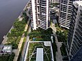深圳市半岛城帮2009-628 - panoramio.jpg