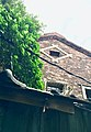 臺北市三井物產株式會社舊倉庫-改建前與在地動物關係.jpg