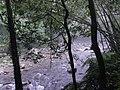 金瓜寮溪 觀魚蕨類步道 Jingualiao Creek Fish Watching and Fern Trail - panoramio.jpg