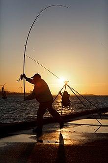 qui concernent la pêche