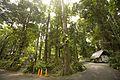 1066-khao-lak-lam-ru-national-park-01.jpg