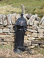 19th C cast iron water hydrant - geograph.org.uk - 721464.jpg