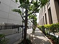 1 Chome Kanda Surugadai, Chiyoda-ku, Tōkyō-to 101-0062, Japan - panoramio (43).jpg