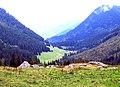 2007-07-04. Les Contamines. Vallée vue du refuge de Balme;.jpg