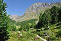 2013-08-06 08-28-37 Switzerland Kanton Graubünden Sfazù Suracqua.JPG