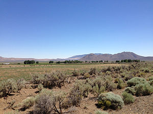 2014-07-06 14 51 51 View of Denio, Nevada from Harney County Route 201 (Fields-Denio Road) a half mile north of the Oregon border.JPG