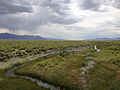 2014-07-30 17 22 45 View south up the Reese River from U.S. Route 50 in Lander County, Nevada.JPG