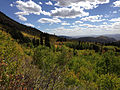 2014-09-25 14 08 26 View across Aspen and Subalpine Fir forest in Copper Basin from Charleston-Jarbidge Road (Elko County Route 748) about 11.3 miles north of Charleston in Elko County, Nevada.jpg