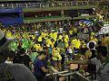 2015-02-13 - Paraíso do Tuiuti (6).jpg
