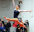 2015 District Championships West Geauga 29.jpg