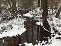 2016-02-15 08 38 37 View east up a snowy Cain Branch of Cub Run in the Armfield Farm section of Chantilly, Fairfax County, Virginia.jpg