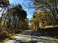 2016-10-25 10 41 36 View south along Shenandoah National Park's Skyline Drive just south of the Franklin Cliffs Overlook on the border of Page County, Virginia and Madison County, Virginia.jpg