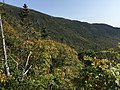 2017-09-11 15 07 16 View southeast across the forest towards the main ridge of Mount Mansfield from the Sunset Ridge Trail at about 3,280 feet above sea level on the western slopes of Mount Mansfield in Underhill, Chittenden County, Vermont.jpg