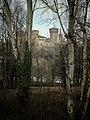 20170112 105147-01 la Rocca tra gli alberi al di là del fiume.jpg