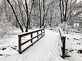 2018-03-21 13 01 36 View along a snow-covered walking path as it crosses a bridge in the Franklin Farm section of Oak Hill, Fairfax County, Virginia.jpg