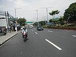 2256Elpidio Quirino Avenue Airport Road NAIA Road 40.jpg