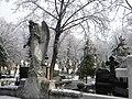 32. Bucuresti, Romania. Din Ciclul BUCURESTIUL SUB ASEDIUL FRIGULUI, Ianuarie 2019. Cimitirul Bellu Catolic. (Acelasi Inger).jpg
