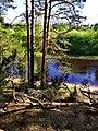 3384. Molodozhnoye. Chyornaya River.jpg