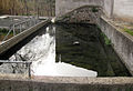 34 Bassa del c. de la Font (Abrera).jpg