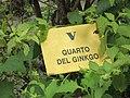 5 (V) Quarto del Ginkgo 10-18 1443.jpg