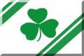 600px Bianca con bande Verdi e trifoglio.png