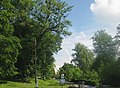 68-242-5017, новоселицький парк.jpg