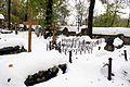 """6891vik Zakopane, cmentarz """"Na Pęksowym Brzyzku"""". Foto Barbara Maliszewska.jpg"""