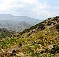A@a agios theodoros area limassol cy - panoramio (7).jpg