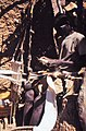 ASC Leiden - W.E.A. van Beek Collection - Dogon markets 06 - Amaigere weaving the long cotton strands that are characteristic for the Dogon, Tireli, Mali 1984.jpg