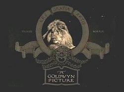 A Goldwyn Picture.jpg