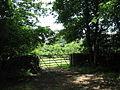 A field gate alongside the Plas Tirion Driveway - geograph.org.uk - 485615.jpg
