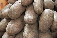 A set of potatoes in market Danilovsky Market, Moscow, Russia (38901410690).jpg