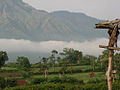 A view of clouds mountains and rural life Kemmangundi Karnataka India 2014.jpg