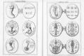 Abraxas seu Apistopistus - Talisman pg.066.png