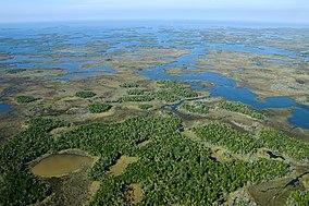 Aerial of Chassahowitzka National Wildlife Refuge (7597338986).jpg