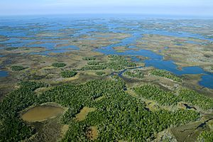 Chassahowitzka National Wildlife Refuge - Aerial view