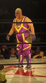 Aja Kong Japanese professional wrestler