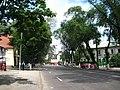 Alecsandri street, portion above Mateevici street, NW view - panoramio.jpg