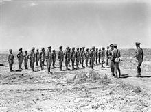 Soldiers on parade in the desert