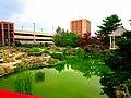 Allen Centennial Gardens Pond - panoramio.jpg