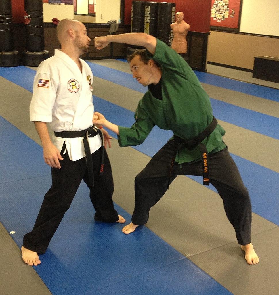 American Kenpo Double Punch