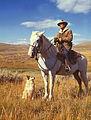 American shepherd3.jpg
