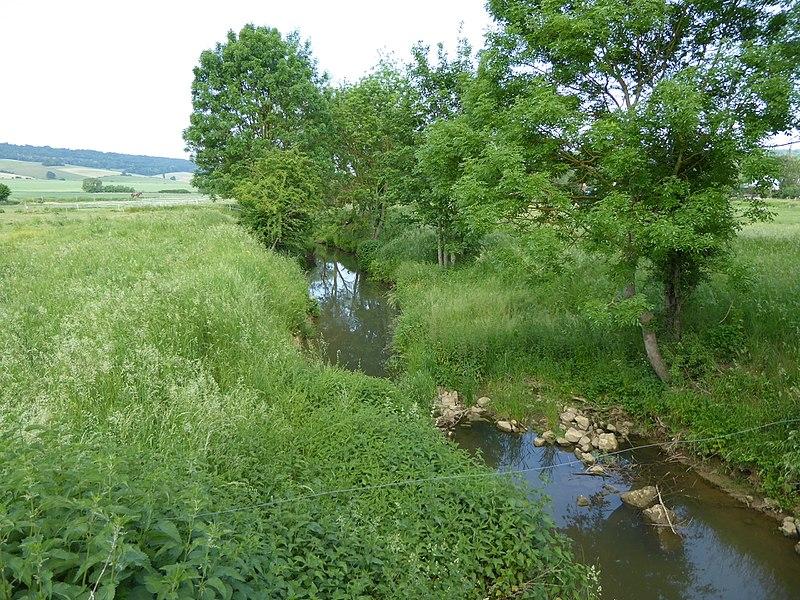 L'Amezule à Agincourt en Meurthe-et-Moselle (fr:France|France]]), vers l'aval.